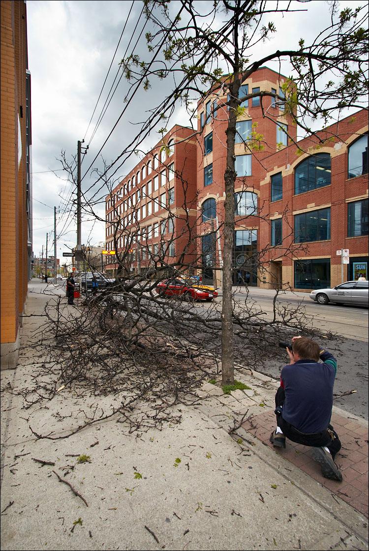fallen tree || canon350d/efs10-22@10 | 1/125s | f6.3 | P@-0.7 | iso200 | handheld