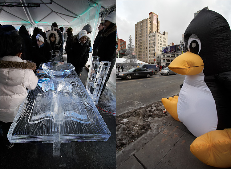 ice and penguin