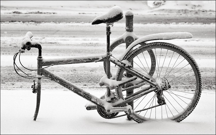 missing wheel in snow || canon350d/efs60 | 1/160s | f5 | iso400 | handheld