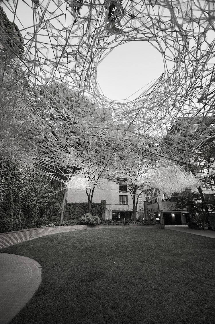web over garden || canon350d/efs10-22@10 | 1/60s | f5 | ISO200 | handheld