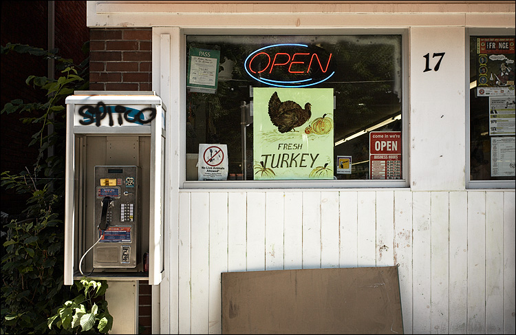fresh turkey and phone || canon5D/EF17-40L@40 | 1/125s | f8 | ISO250 | handheld