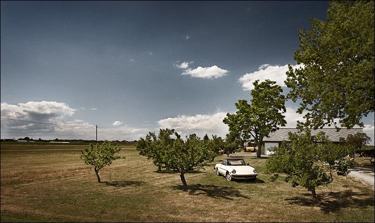 porsche and trees || canon5D/EF17-40L@17 | 1/1000s | f5.6 | ISO400 | Biking