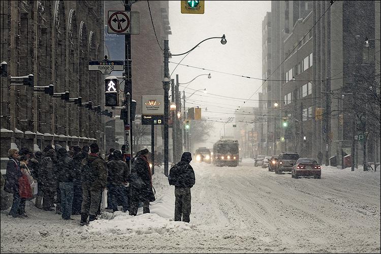 snowy queen || Canon5D/EF100f2.8 | 1/125s | f3.2 | ISO400 | Handheld