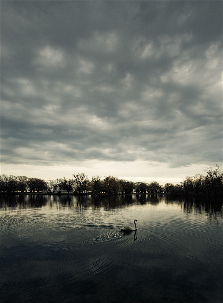 swan lake || Canon5D/EF17-40L@17 | 1/80s | f6.3 | ISO125