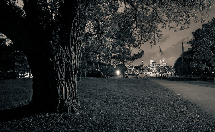 city and the tree || Canon5D/EF17-40L@23 | 25s | f6.3 | ISO100 | Tripod