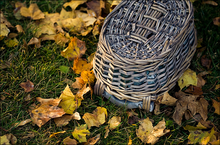 basket and the leaves || Canon5D/EF100f2.8 | 1/200s | f2.8 | ISO200 | Handheld