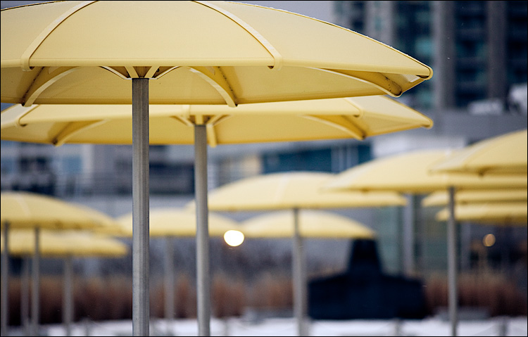 yellow umbrellas || Canon5D2/EF200f2.8 | 1/125s | f2.8 | ISO800