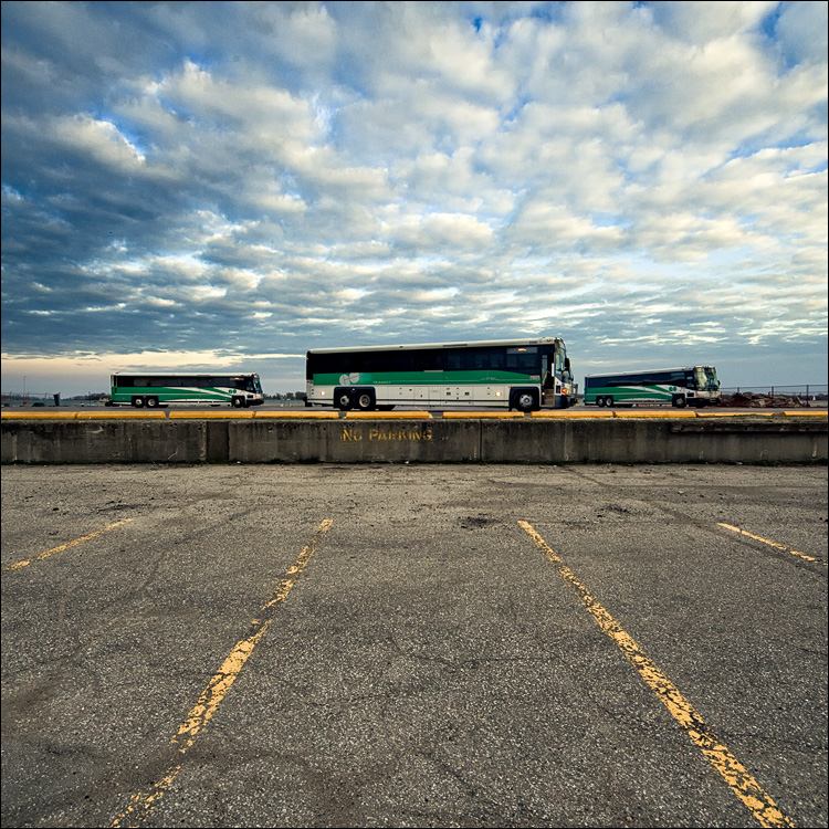 green buses, yellow lines || Canon5D2/Sigma12-24@12 | 1/125s | f11 | ISO800