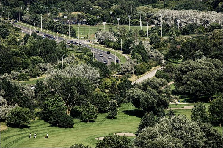 three golfers || Canon5D/EF70-200f4L@200 | 1/800s | f9 | ISO400