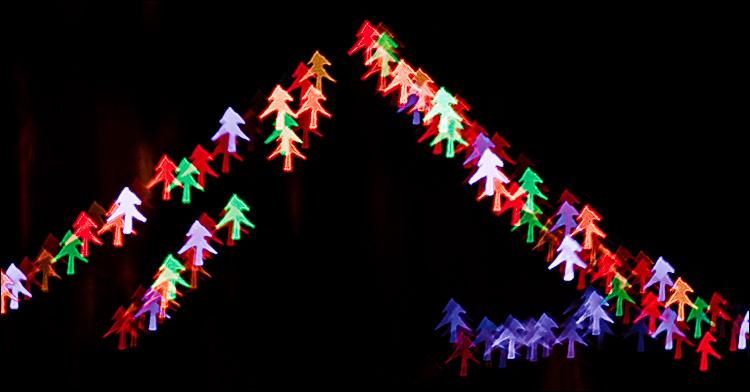 tree lights || Canon5D2/EF100f2.8 | 4s | f2.8 | ISO400
