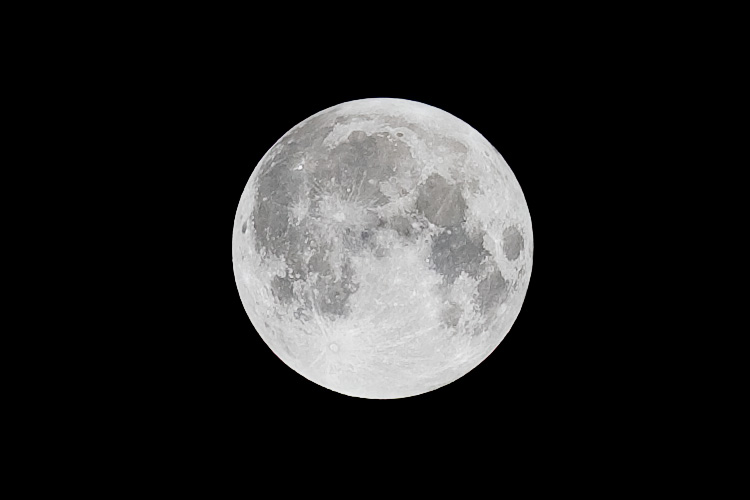 wolf moon    Canon 5D2/EF200f2.8L   1/125s   f9   ISO100