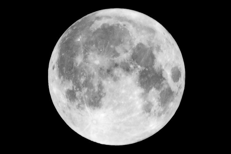 wolf moon || Panasonic GF1/Pana45-200@200 | 1/125s | f11 | ISO100