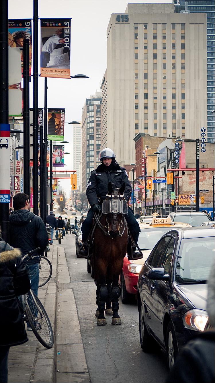 horse on yonge || Panasonic GF1/Pana45-200@45 | 1/200s | f4 | ISO160
