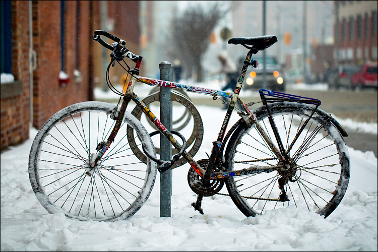 a bike for all seasons || Canon5D2/EF100f2.8L | 1/800s | f2.8 | ISO100
