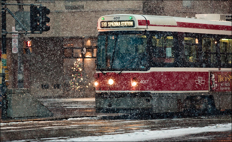 510 in snow || Canon5D2/EF200f2.8L | 1/250s | f3.2 | ISO1600