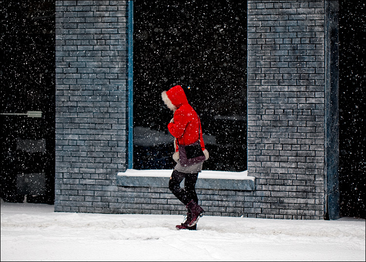 red riding in snow || Canon5D2/EF100f2.8L | 1/640s | f2.8 | ISO200