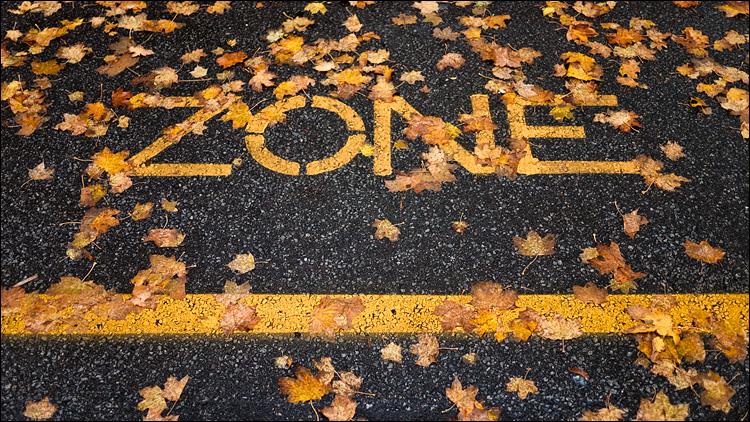 fall zone || Panasonic GF1/Pana20f1.7 | 1/160s | f1.7 | ISO100