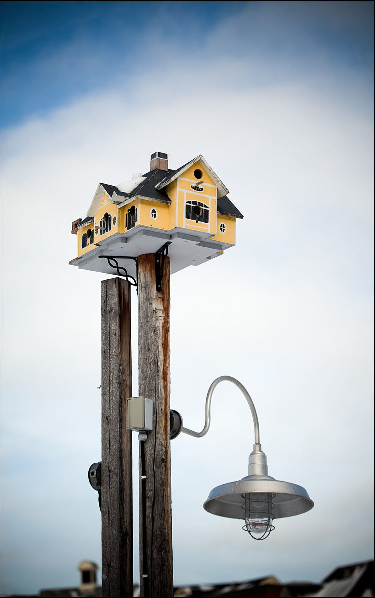 light and birdhouse || Canon5D2/EF70-200f4L | 1/1250s | f4 | ISO100