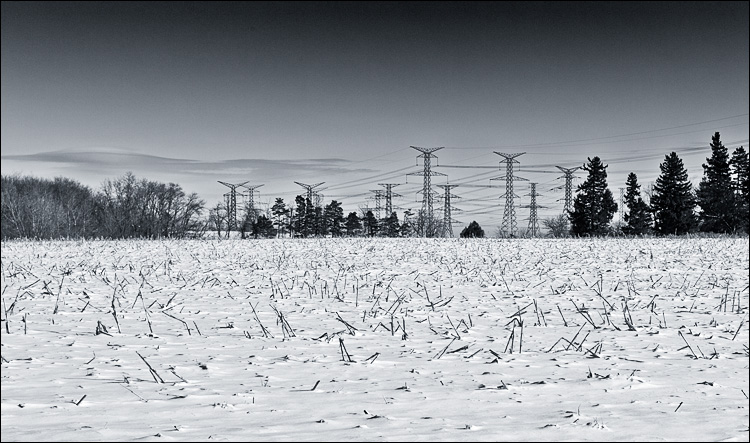 electric field || Canon5D2/EF24-105f4L | 1/640s | f8 | ISO200