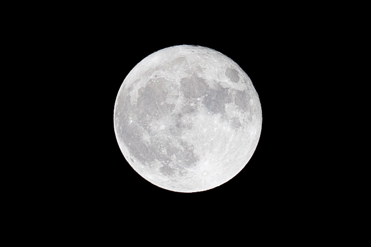 Spring Moon || Canon5D2/EF200f2.8L | 1/160s | f9 | ISO100