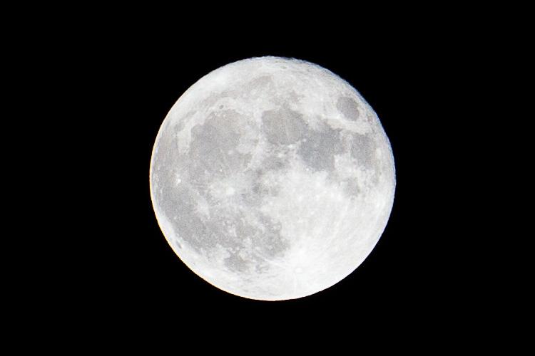 Spring Moon || Panasonic GH2/Vario14-140@140 | 1/180s | f11 | ISO160