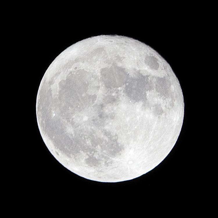 Spring Moon || Panasonic GH2/Vario45-200@200 | 1/180s | f11 | ISO160