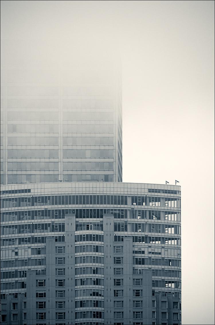 1 King in Fog || Panasonic GH2/Vario 100-300@193 | 1/800s | f5 | ISO160