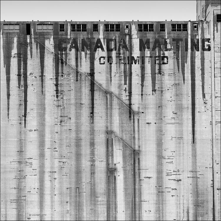 Malting in Rain || Canon5D2/EF50f1.4L | 1/500s | f4 | ISO1600