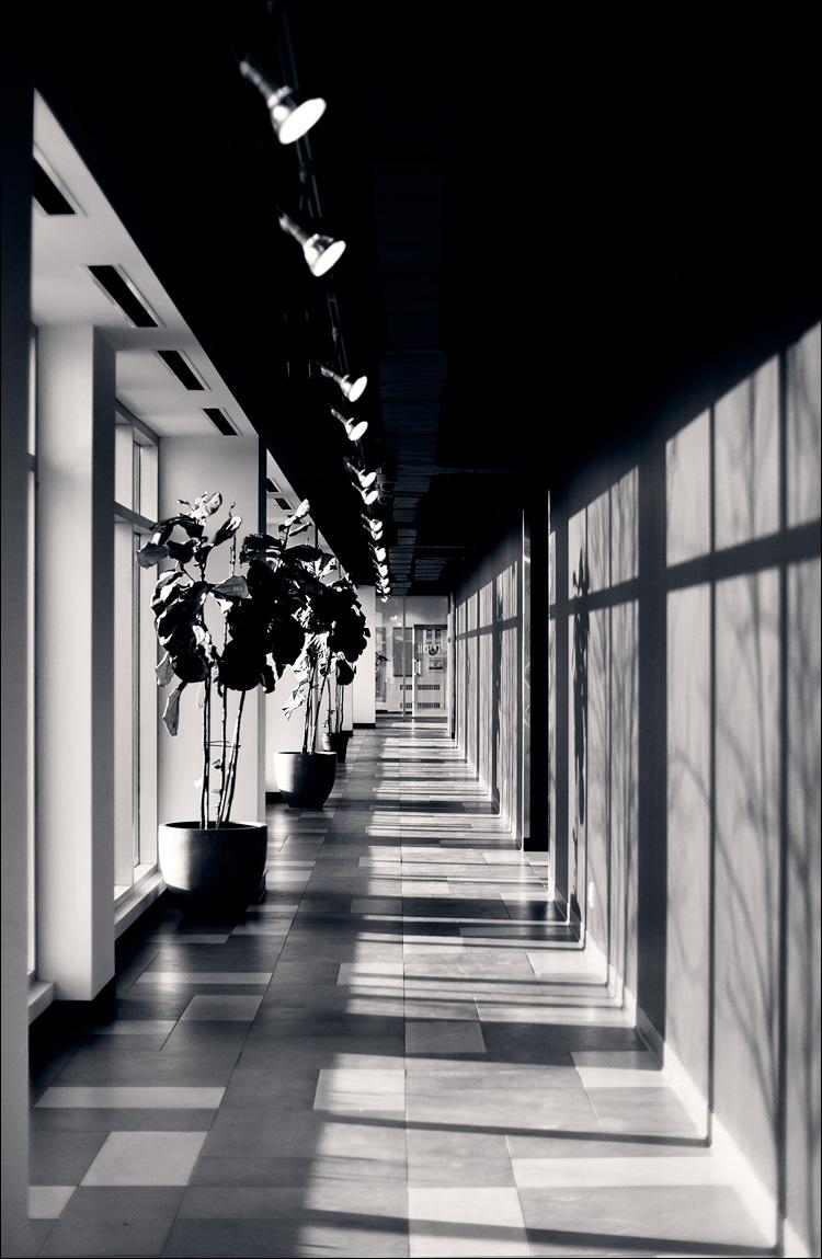 Hallway    Panasonic GH2/Voigtlanderf0.95   1/250s   f1.4   ISO160