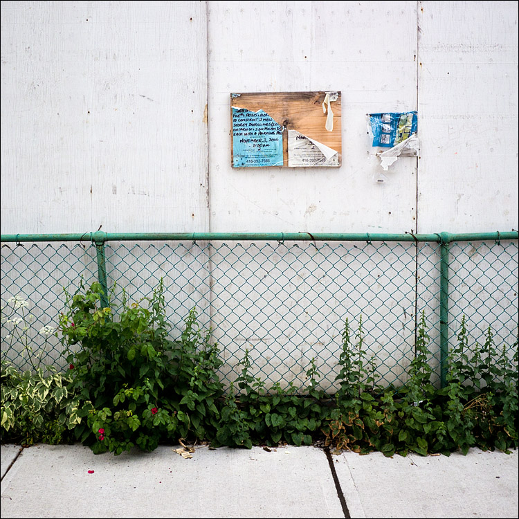 Fenced Wall || Panasonic GH2/Lumix14f2.5 | 1/1000s | f2.8 | ISO160