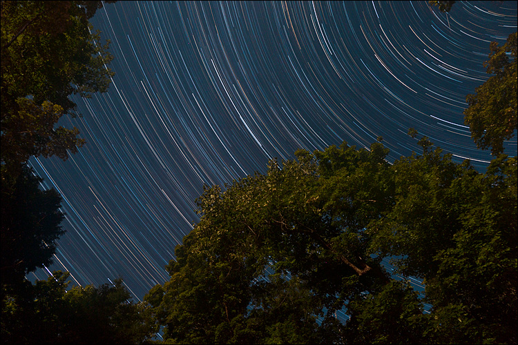 Trails and Trees    Canon5D2/EF24-105f4L@24   90m   f8   ISO400