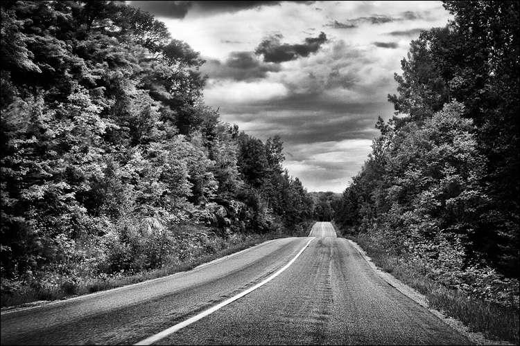 Road and Trees || Canon5D2/EF24-105f4L@65 | 1/320s | f9 | ISO800
