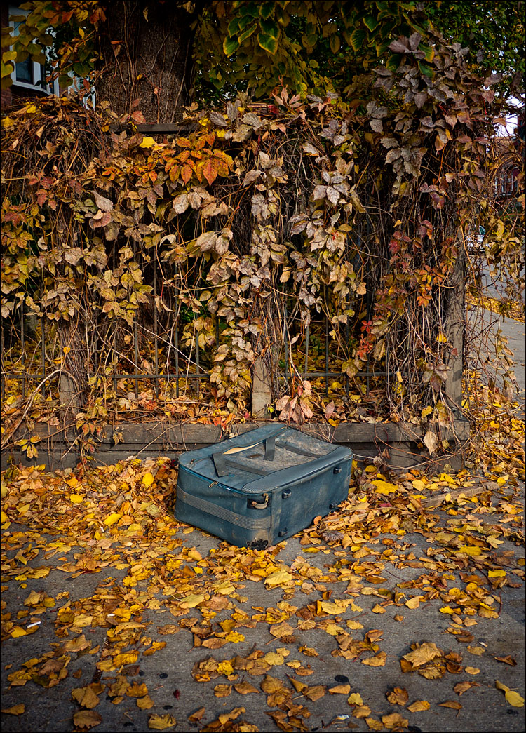 The Suitcase on Yellow || Panasonic GF1/Lumix14f2.5 | 1/400s | f2.5 | ISO100