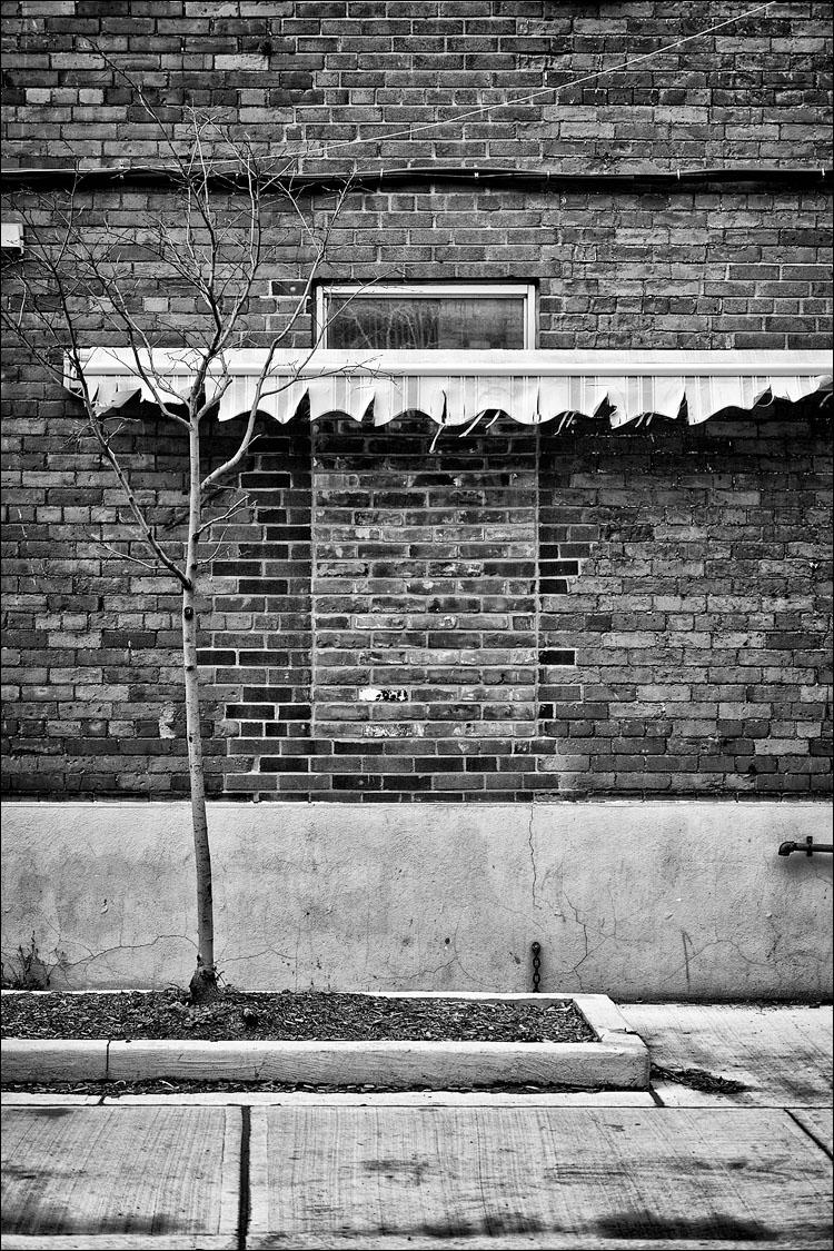 Hidden Window || Panasonic GH2/Lumix14-140@41 | 1/125s | f5.3 | ISO160