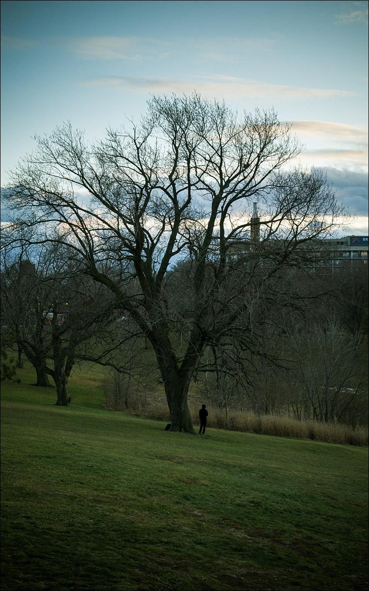 Man and Tree || Panasonic GH2/Lumix 14-140@32 | 1/100s | f5.6 | ISO160
