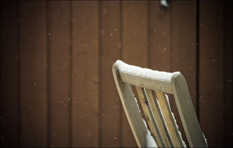 Snowy Backyard  || Panasonic GX1/Oly45f1.8 | 1/640s | f1.8 | ISO160