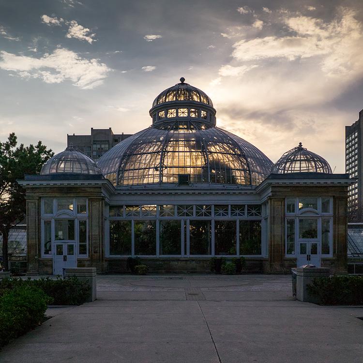 Allan Gardens Conservatory || PanasonicGX1/Lumix14-140@14 | 1/2500s | f4.5 | ISO160