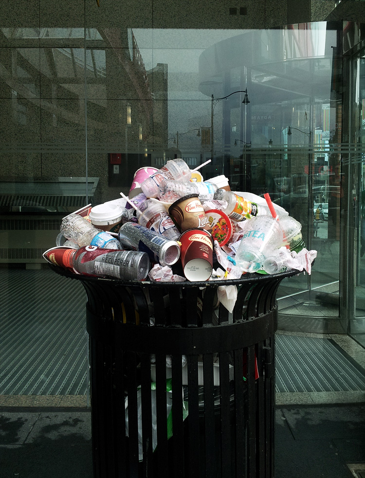 Trash Bouquet || Samsung Galaxy S2