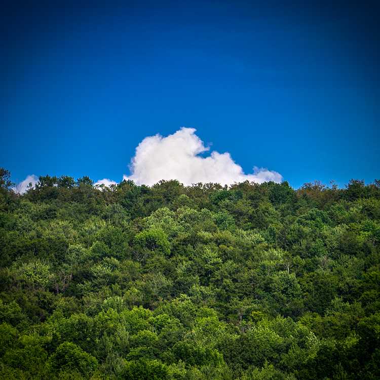 Peeking Cloud || Panasonic GX1/Lumix14-140@140 | 1/640s | f6.3 | ISO400