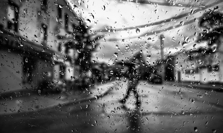Rainy Queen || Panasonic GX1/Lumix12-35@12 | 1/160s | f2.8 | ISO160