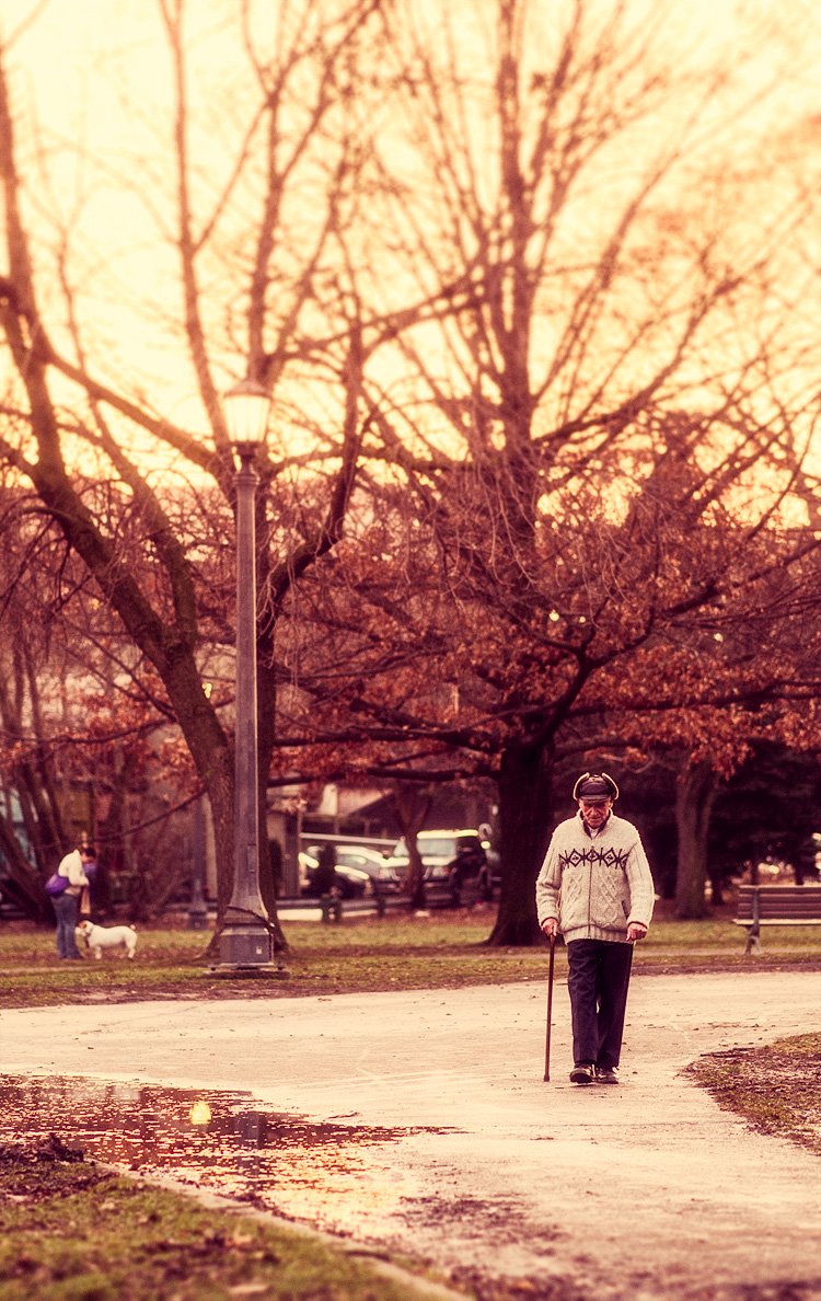 Walk in the Park || Panasonic GH2/Olympus 75mm | 1/160s | f1.8 | ISO200