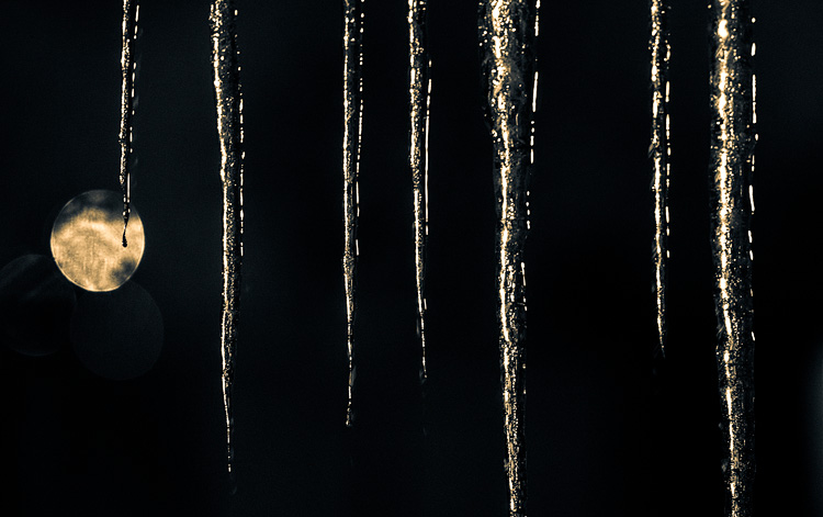 Icicles at Night || Panasonic GH3/Olympus 75 | 1/30s | f1.8 | ISO1600