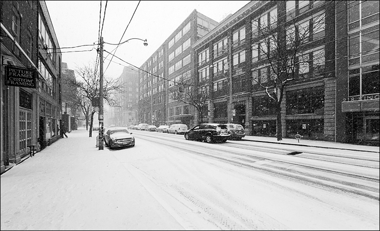 snow_spring_kingr_sherbourne_02bw.jpg