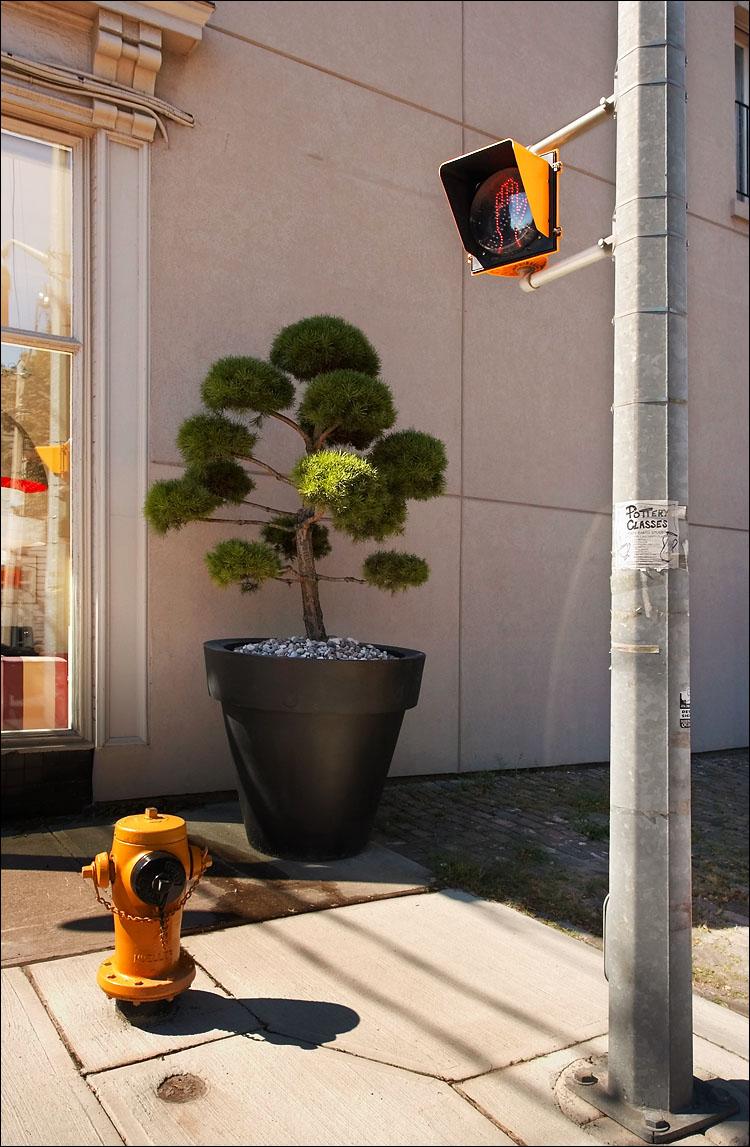 big vase || canon350d/ef17-40L@17 | 1/80s | f6.3 | iso100 | handheld
