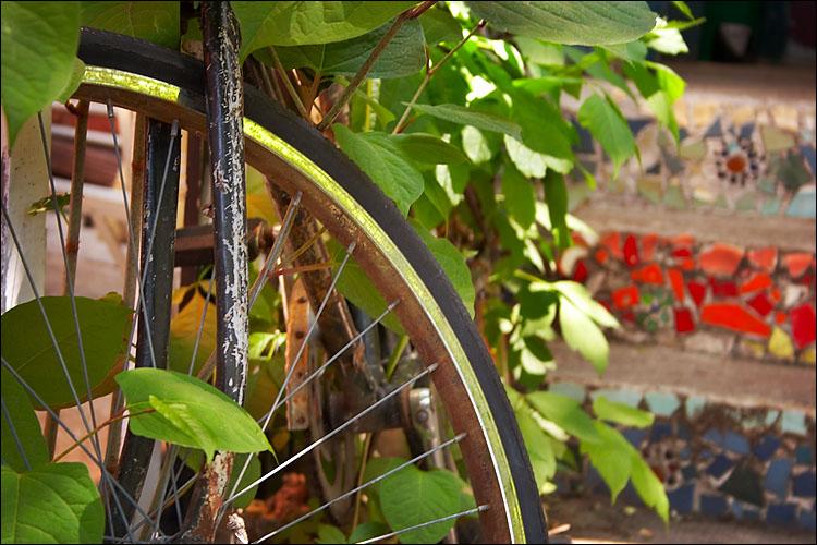 hidden bike || canon 350d/efs18-55@55 | 1/13s | f5.6 | iso100 | handheld