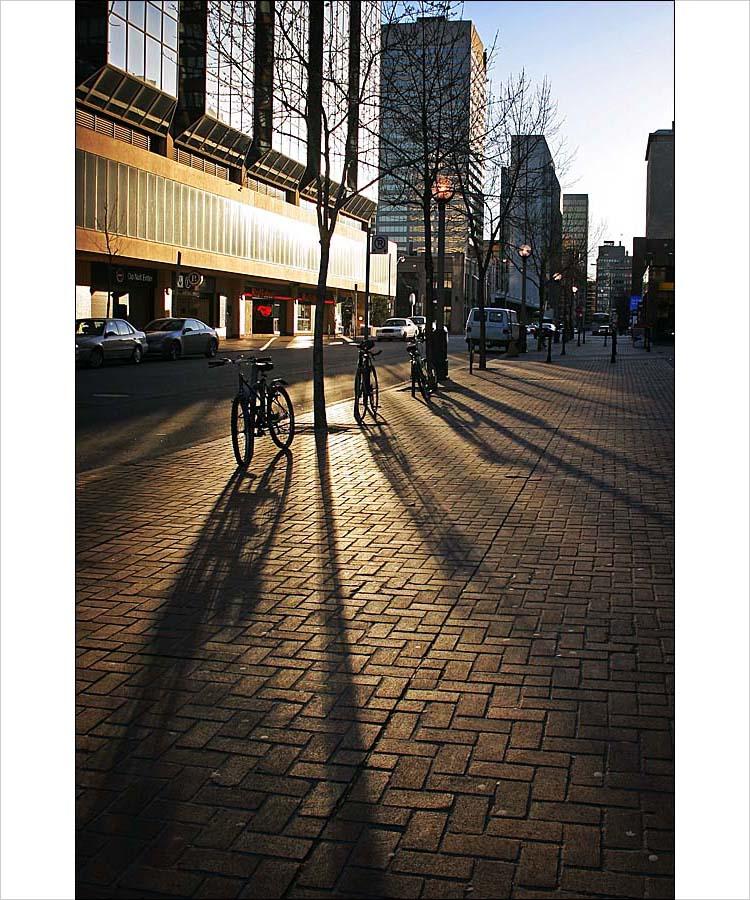 bike shadows || canon digital rebel | 1/125s | f7.1 | ISO 100