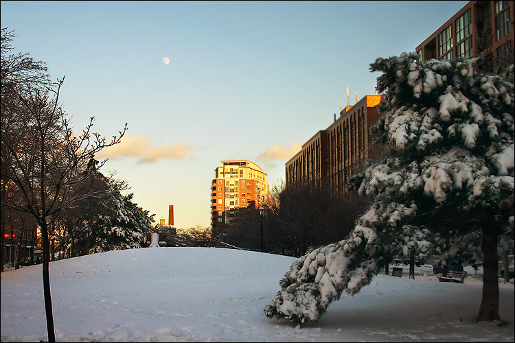 snow and the moon || canon 300d | 1/125s | f8 | ISO 200 | handheld