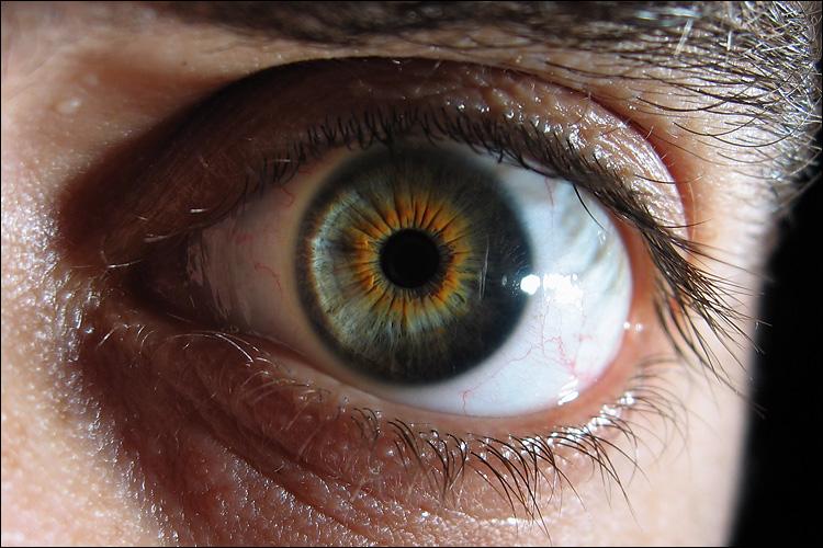 eye macro || canona95 | 1/60s | f3.5 | iso50