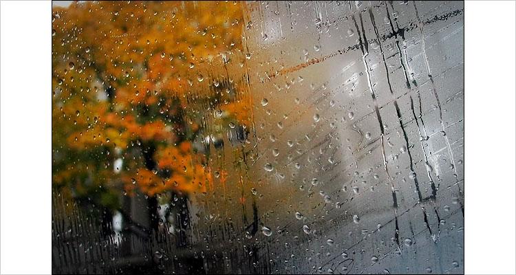 عکس باران پشت شیشه