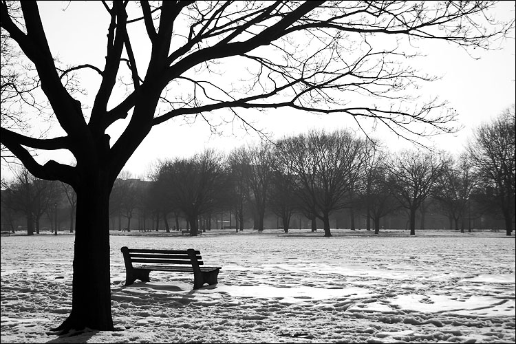 park bench || canon 300d/ef-s 18-55 | 1/400s | f7.1 | ISO 400 | handheld